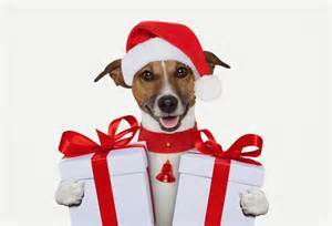 dog Can You Teach Friendly? Customer Service & Reputation Management, especially during the Christmas Crunch